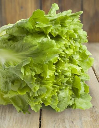 Cespo Scarola a peso Vegetables Our Production Shop Online