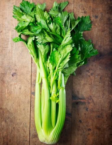 Sedano prov.Lazio a peso Vegetables from Italy Shop Online