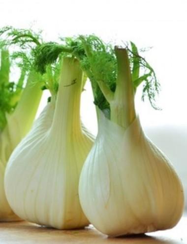 Finocchi a peso Vegetables Our Production Shop Online