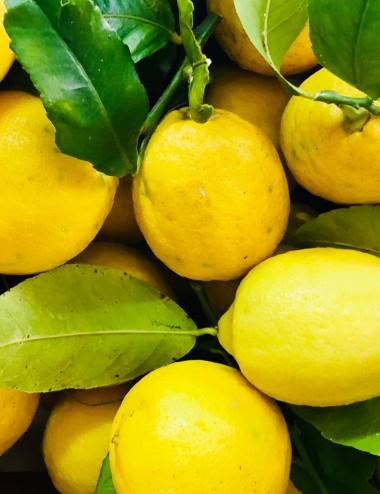 Limoni Bio a peso Organic fruit Shop Online