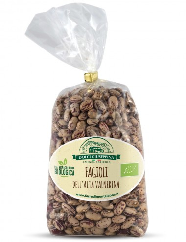Fagioli Borlotti Bio 500gr Legumes and Cereals Shop Online