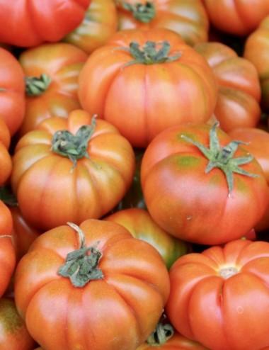 Pomodoro Marinda prov.Sicilia a peso Vegetables from Italy Shop
